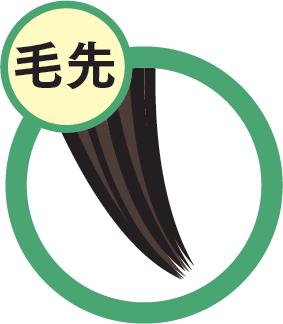 icon_kesaki