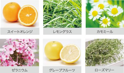 天然製油ブレンド※3のさわやかな柑橘系の香り!